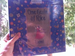 one-grain-of-rice-book-2016