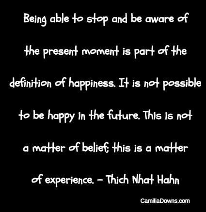 Thich Nhat Hahn Quote April 2018